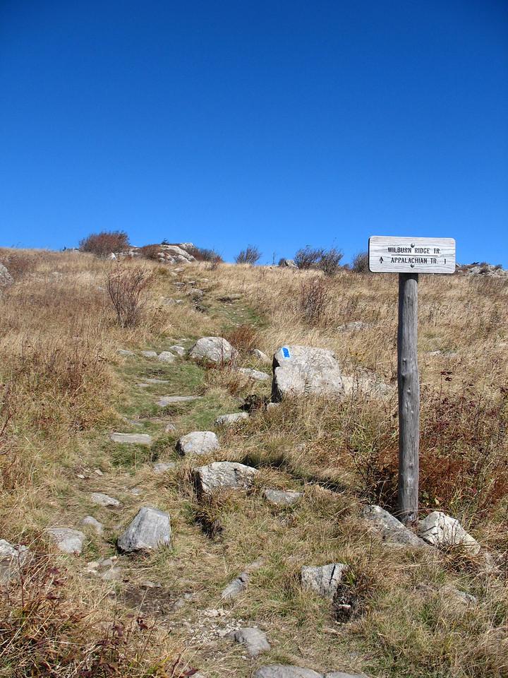 Wilburn Ridge/Appalachian Trail - 5,200'