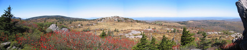 Wilburn Ridge/Appalachian Trail - 5,450'