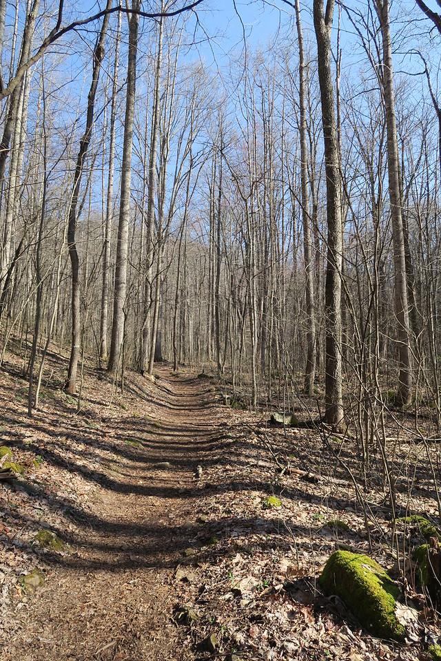 Ewing Trail - 1,700'