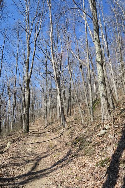 Ewing Trail - 3,120'