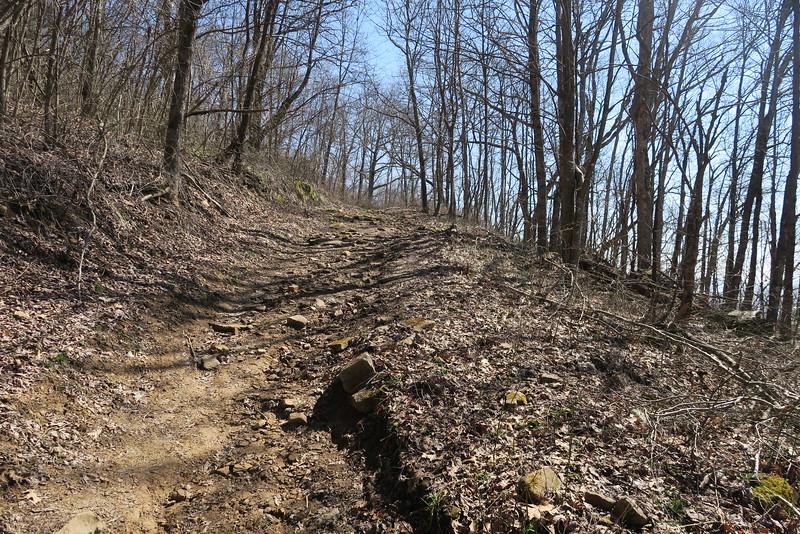 Ewing Trail - 3,350'