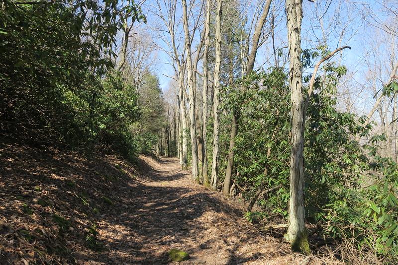 Ewing Trail - 3,370'
