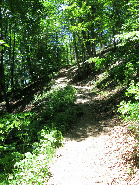 The majority of the vertical climb is saved for the last half of the trail.  The popularity of the trail has left a well-worn path that is actually quite easy to walk despite the steepness...