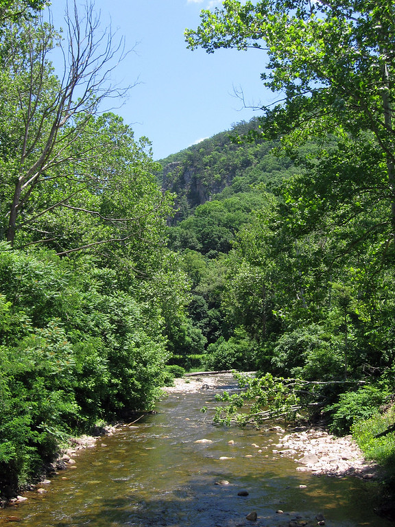 The South Fork of the Potomac River