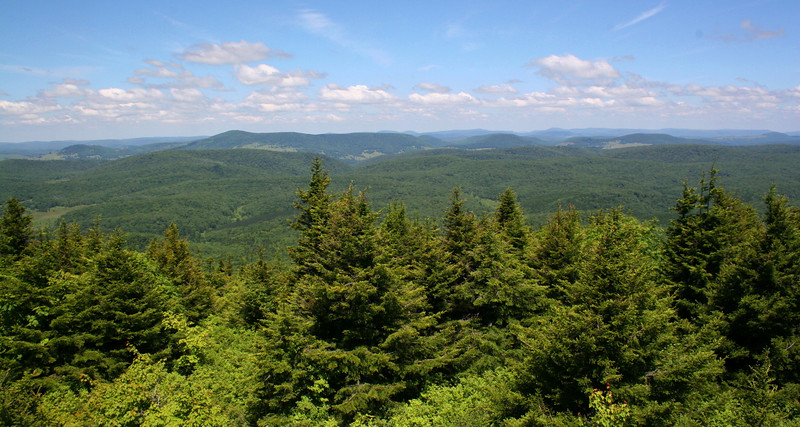 The view west from the summit tower was jaw-dropping...the Monongahela National Forest is a truly spectacular place...