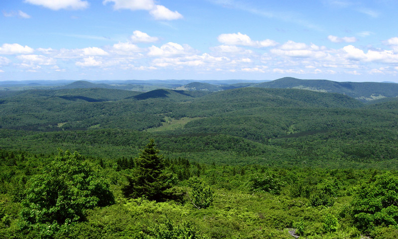 I wondered at the cause of the openness of the terrain on the western slopes of Spruce Knob...was it due to the climate or human intervention?  Either way it affords wonderful views...