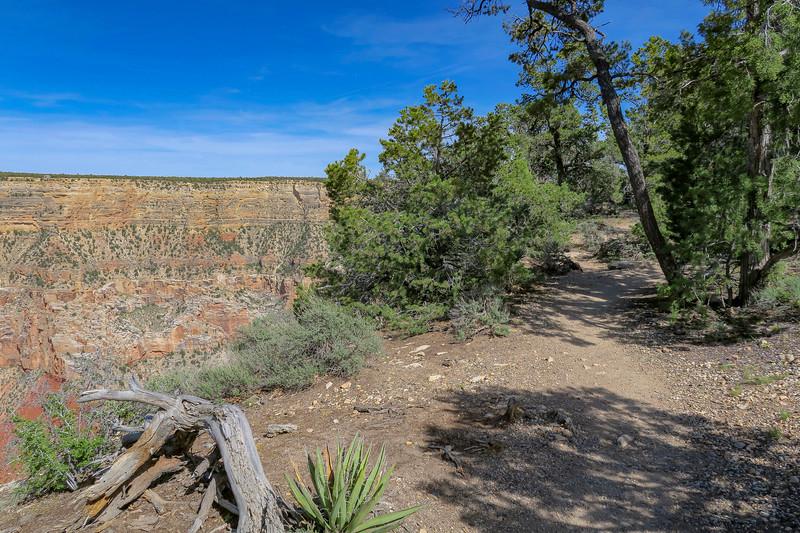 Rim Trail -- 6,810'