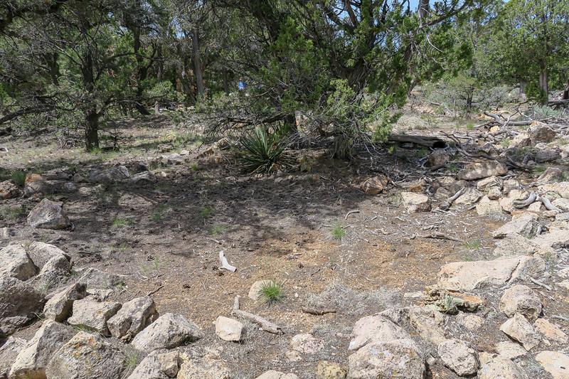 Tusayan Ruins -- Small Kiva