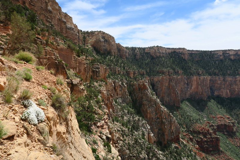 South Kaibab Trail -- 6,800'