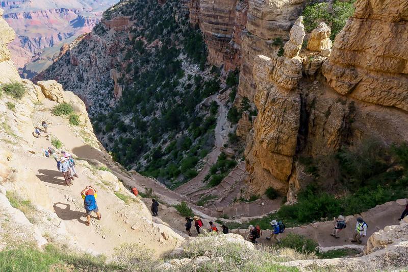 South Kaibab Trail -- 7,100'