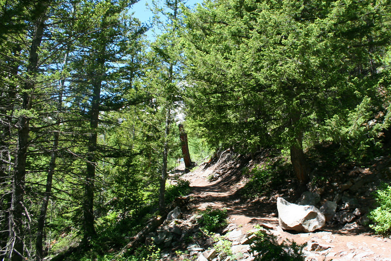 Crater Lake Trail - 9,770'