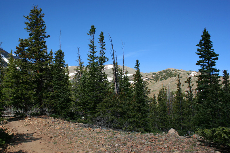 North Mount Elbert Trail -- 11,400'