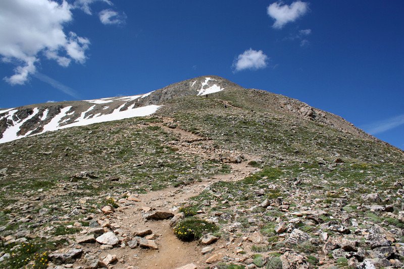North Mount Elbert Trail -- 13,100'