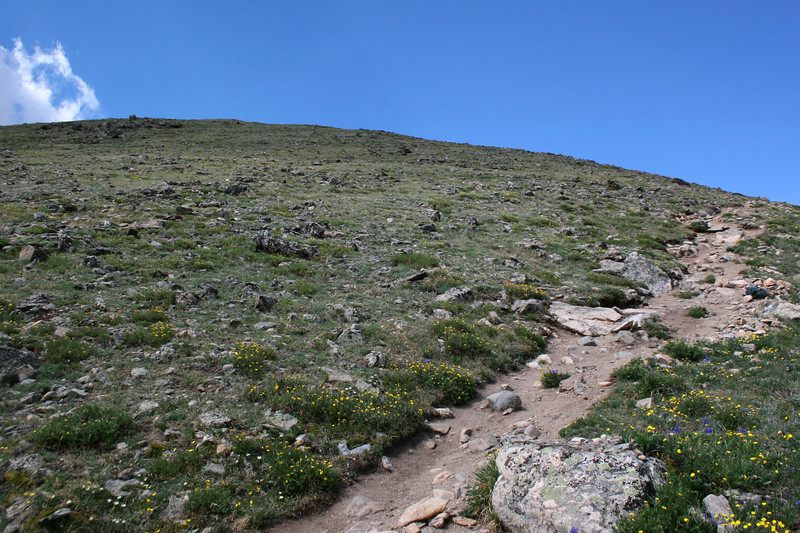 North Mount Elbert Trail -- 12,500'