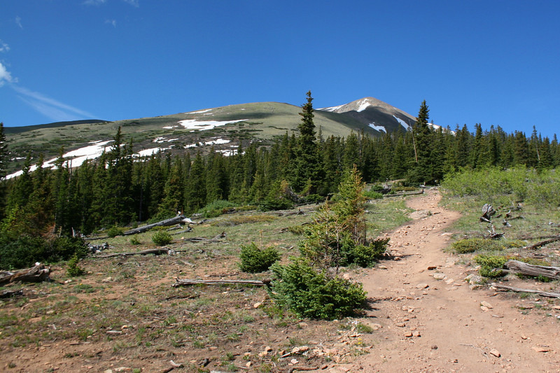 North Mount Elbert Trail -- 11,600'