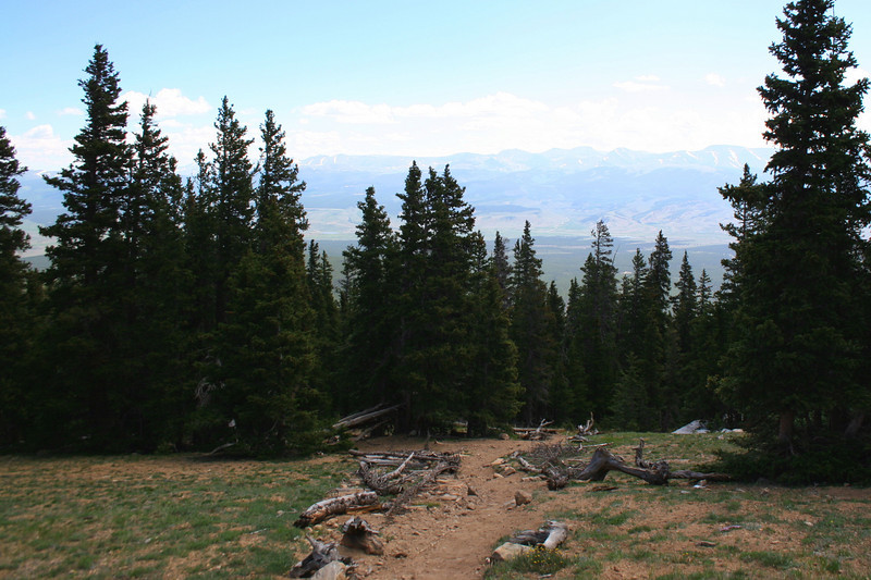 North Mount Elbert Trail -- 11,900' - Treeline