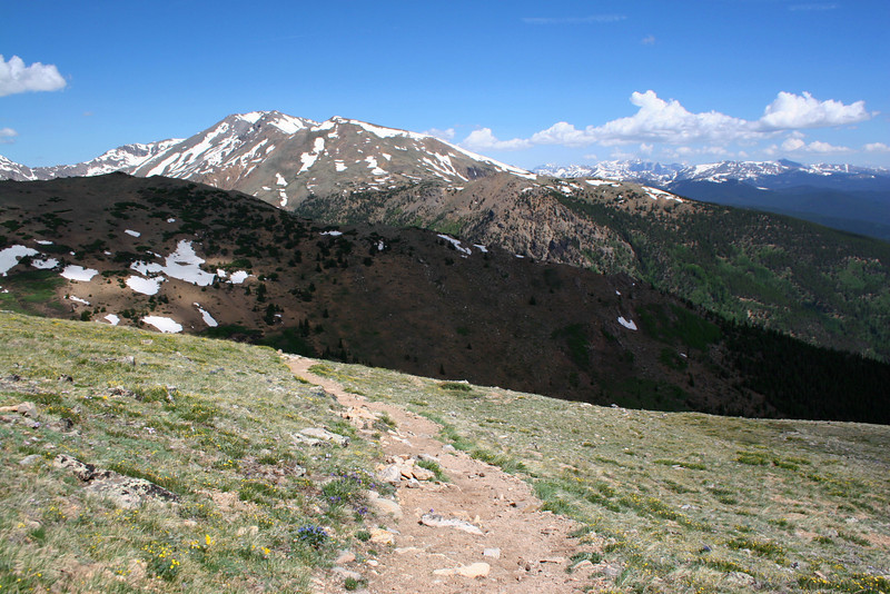 North Mount Elbert Trail -- 12,400' - Mt. Massive (14,421')