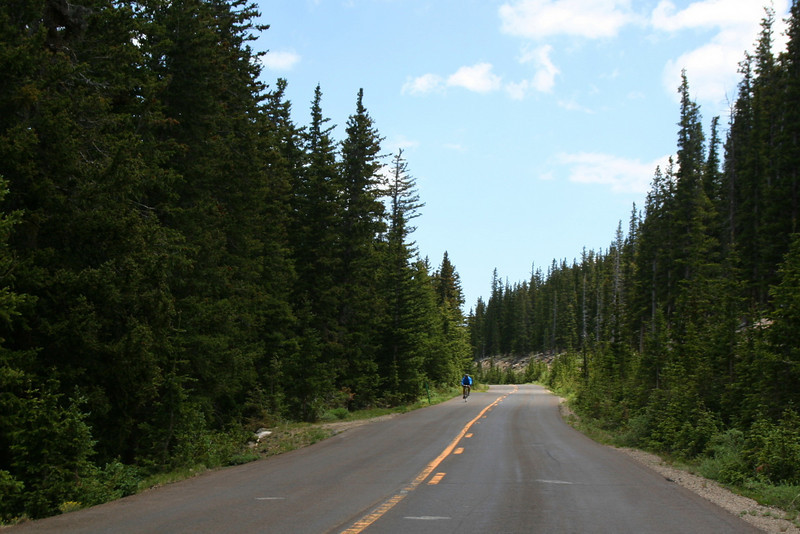 Mount Evans Road -- 11,000'