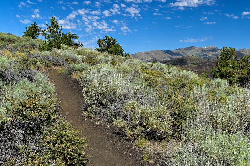 Big Sink Overlook Spur -- 5,950'