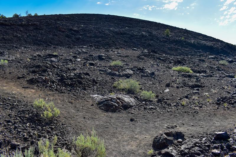 Broken Top Loop Trail -- 5,870'