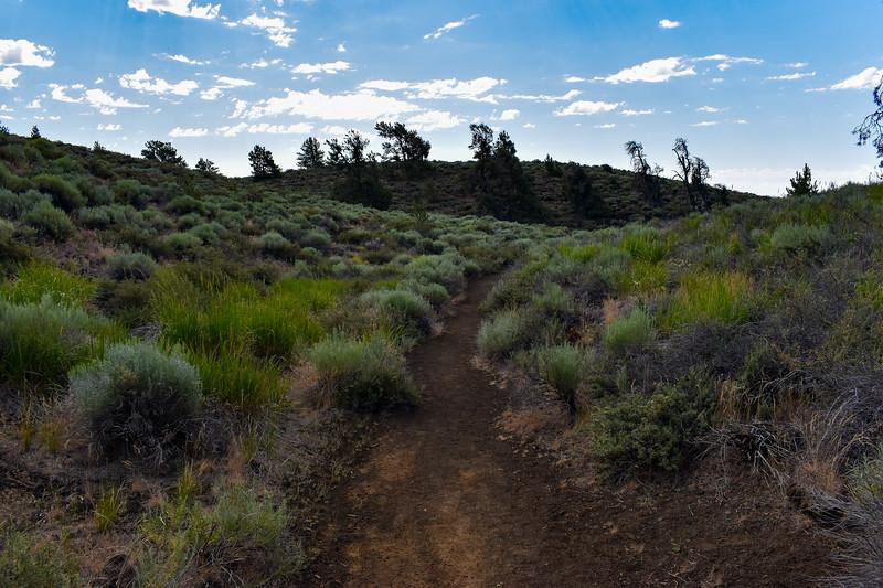 Broken Top Loop Trail -- 5,960'