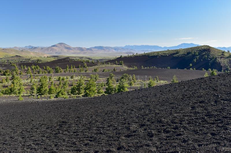Inferno Cone Trail -- 6,080'