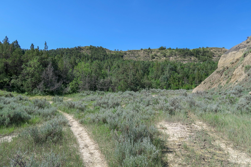 Caprock Coulee Trail -- 2,180'