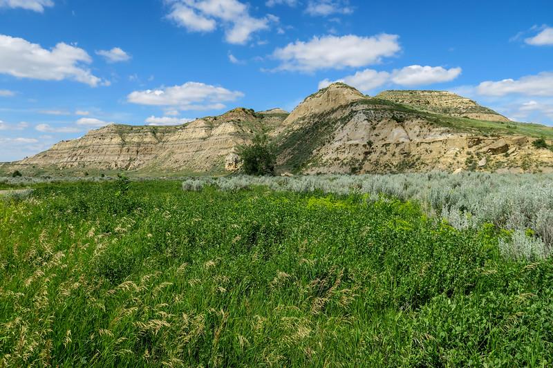 Scenic Loop Drive @ Jones Creek Trail -- 2,260'