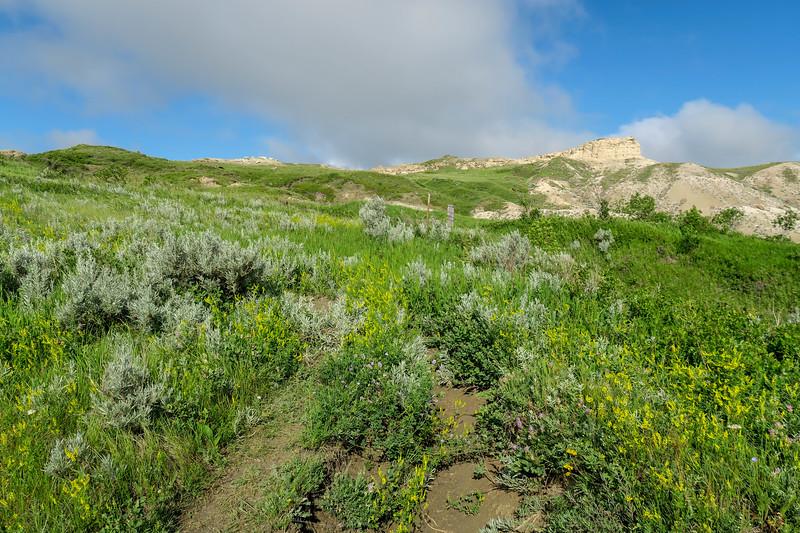 White Butte Trail -- 3,260'