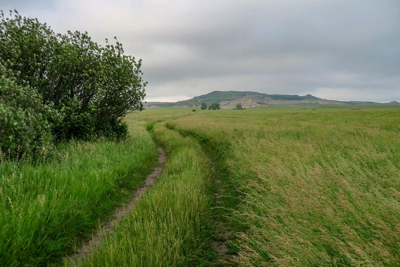 White Butte Trail/Farm Road -- 3,080'