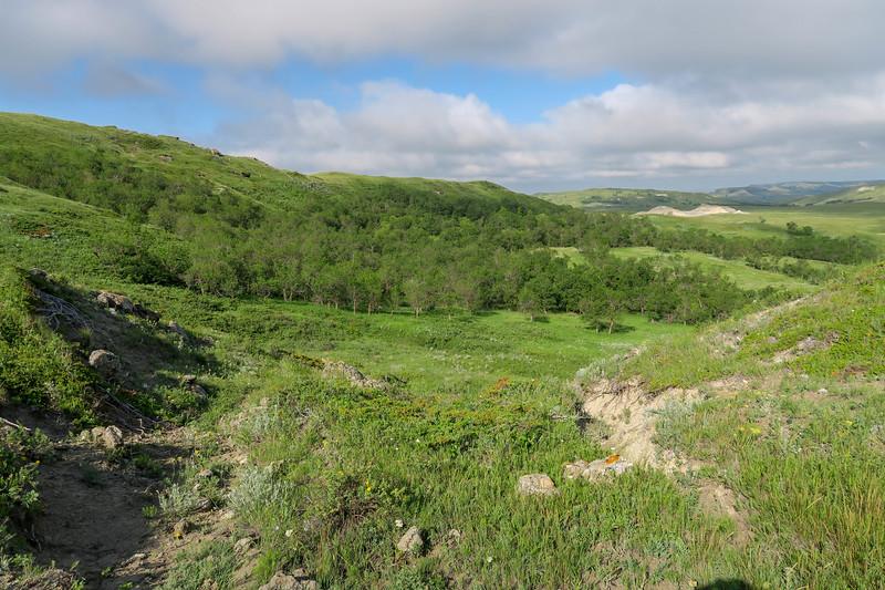 White Butte Trail -- 3,370'