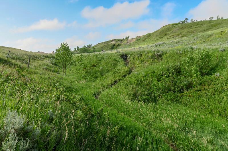 White Butte Trail -- 3,250'