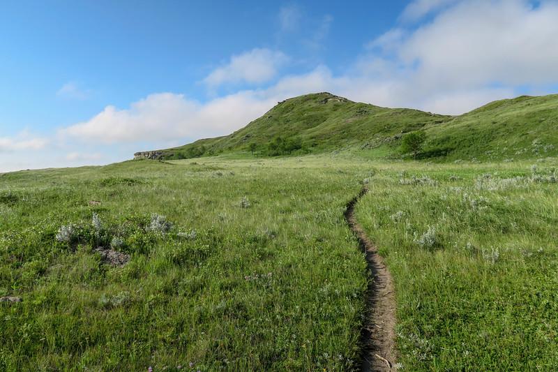 White Butte Trail -- 3,340'