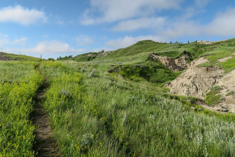 White Butte Trail -- 3,240'