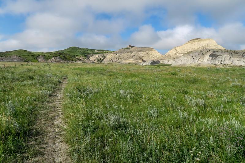 White Butte Trail -- 3,160'