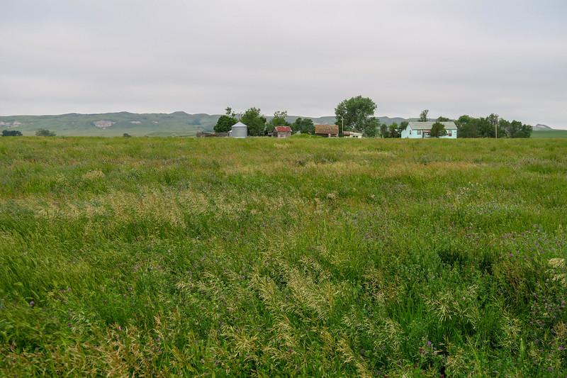 White Butte Trail/Farm Road -- 3,100'