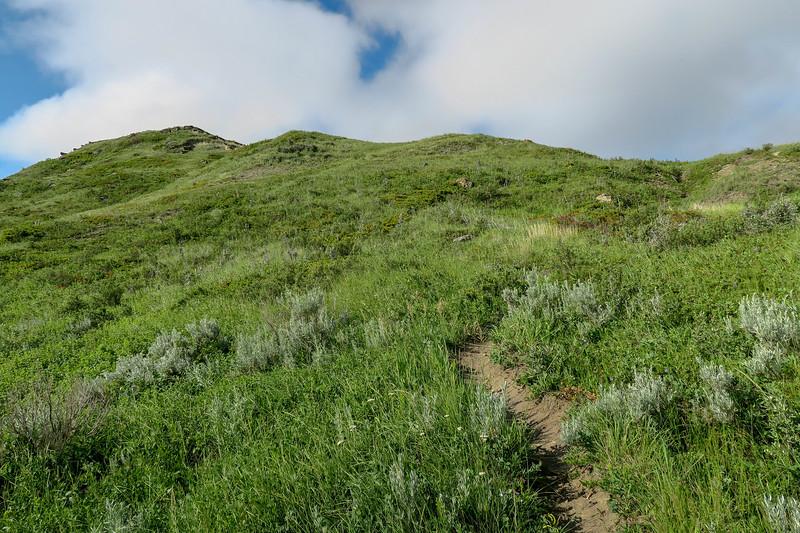 White Butte Trail -- 3,350'