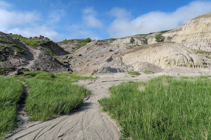 White Butte Trail -- 3,200'