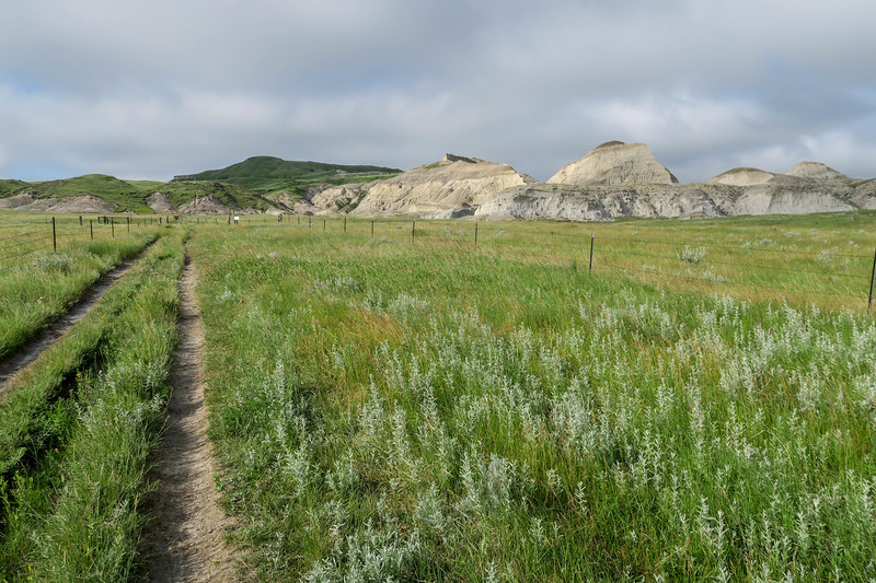 White Butte Trail/Farm Road -- 3,160'
