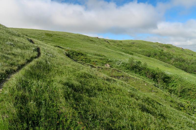 White Butte Trail -- 3,440'