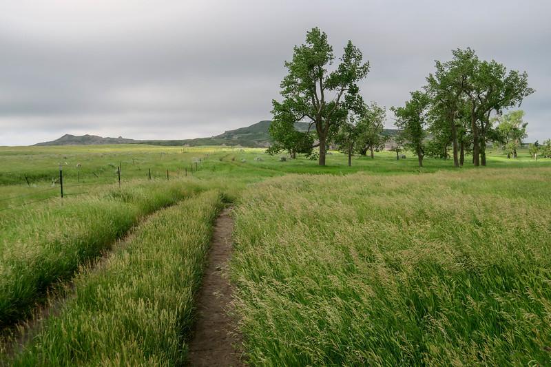 White Butte Trail/Farm Road -- 3,120'