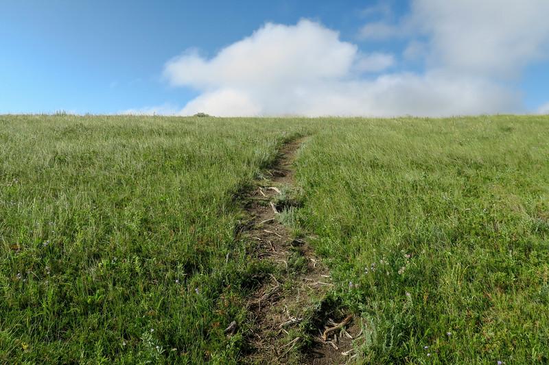 White Butte Trail -- 3,470'