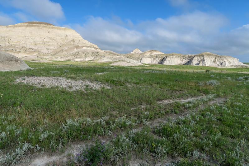 White Butte Trail -- 3,180'