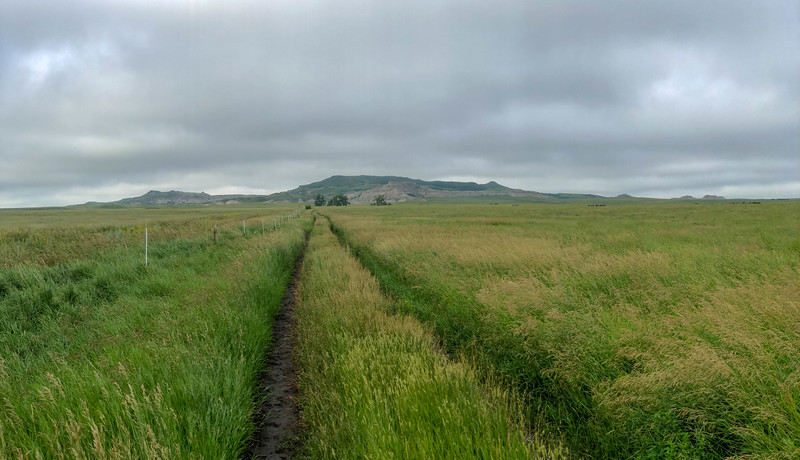 White Butte Trail/Farm Road -- 3,090'