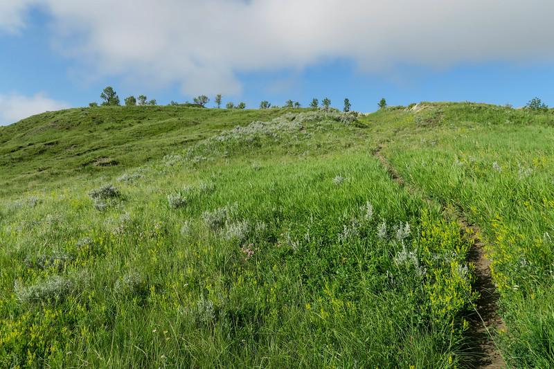 White Butte Trail -- 3,280'