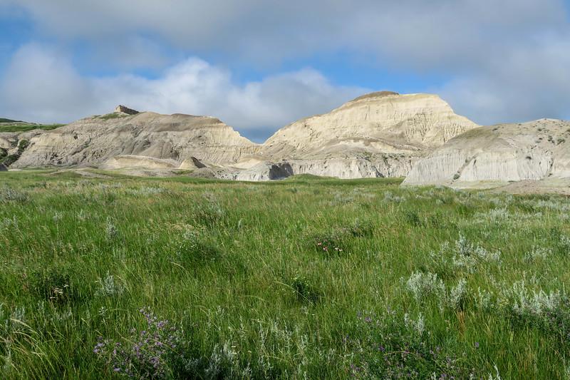 White Butte Trail -- 3,170'