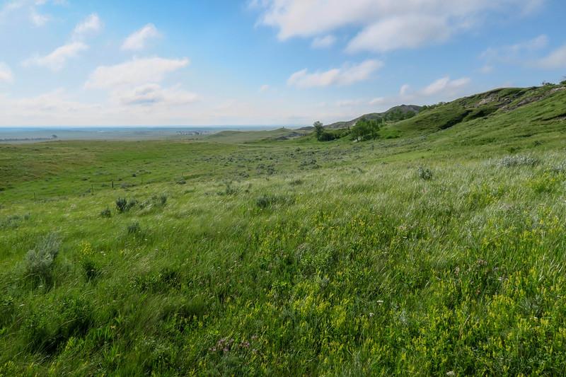 White Butte Trail -- 3,290'