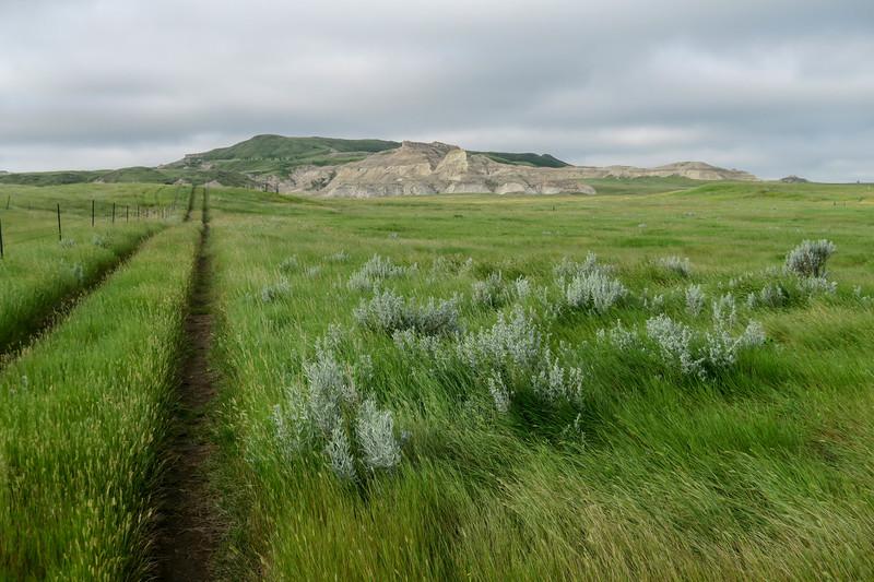 White Butte Trail/Farm Road -- 3,130'