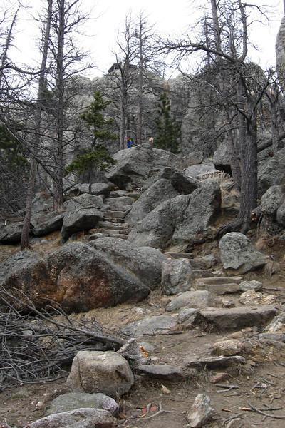 Trail #9 - 7,100'