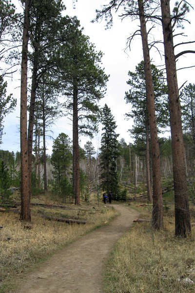 Trail #9 - 6,200'